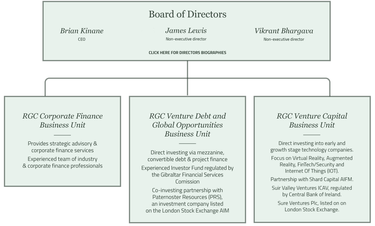 Riverfort Capital Directors and Structure Diagram